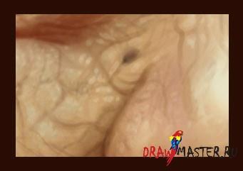 Рисуем пожилых людей