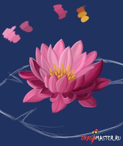 Учимся рисовать Водяную Лилию
