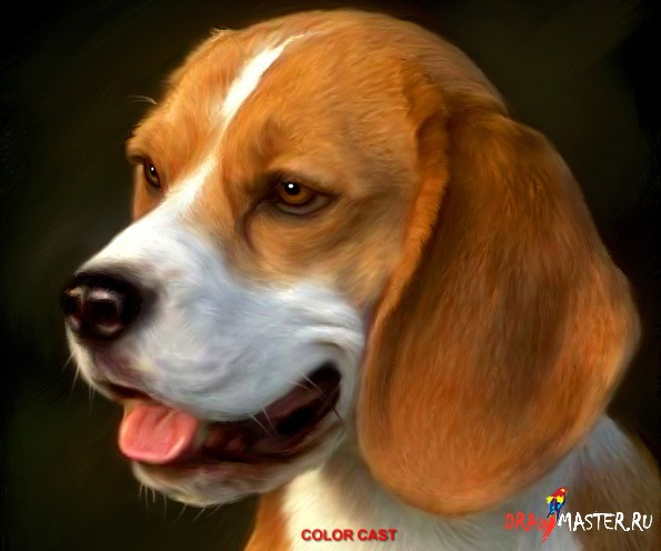 Как научиться рисовать собаку (Фотореалистичное размазывание)