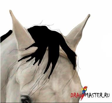 Как нарисовать Гриву лошади
