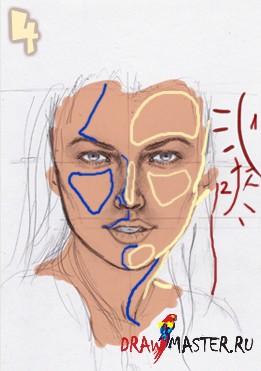 Рисуем реалистичный Портрет девушки Эстеллы (Estella)