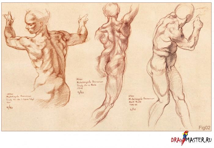 Фигуральное рисование. Фундаментальные знания – Часть 1