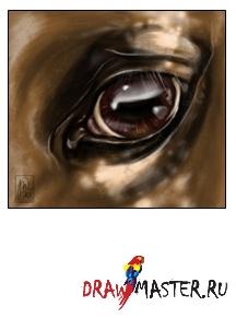 Рисуем глаз лошади