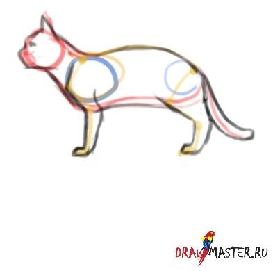 Учимся рисовать Кошек