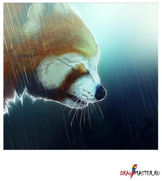 """Рисуем Малую Панду - """"Слезы под дождем"""""""
