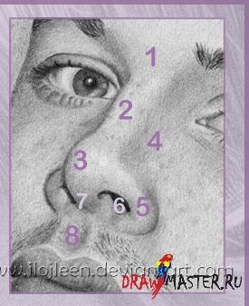 Как рисовать Носы