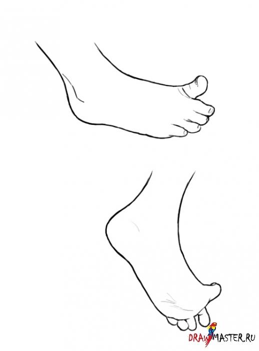 Как рисовать Кисть руки и Стопу