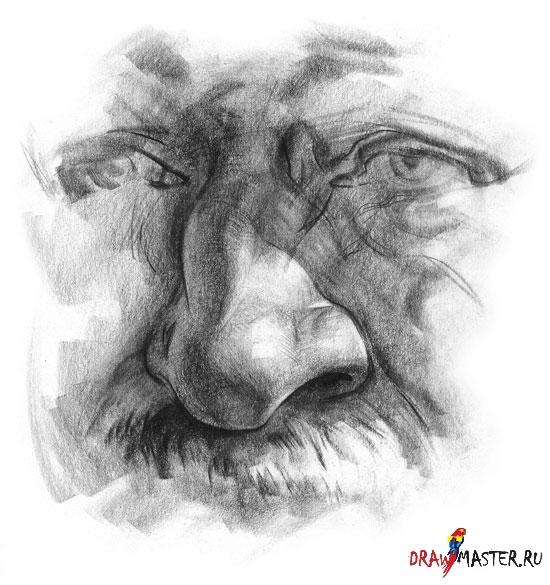 Как рисовать Нос (от Станислава Прокопенко)