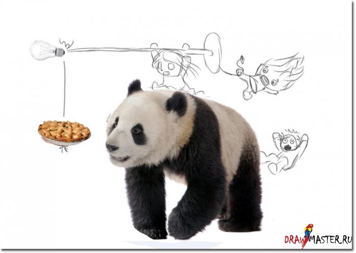 """Как нарисовать иллюстрацию """"Верхом на Панде"""""""