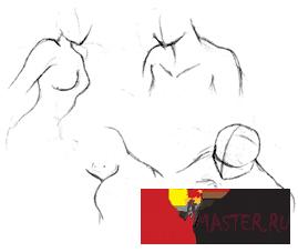 Урок по Анатомии. Манга