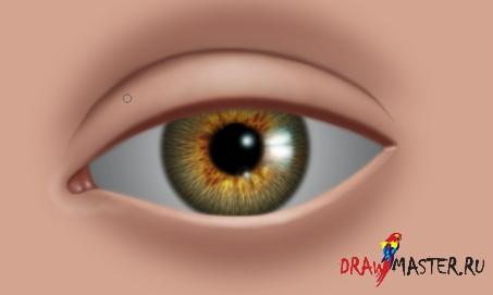 Как нарисовать Реалистичные глаза – Часть 2