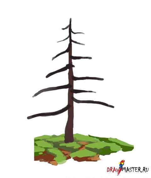 Как рисовать деревья бесплатные