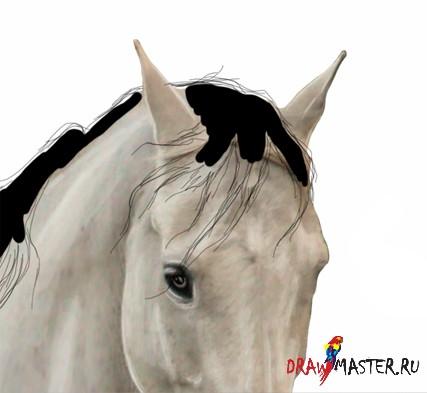 Как сделать гриву для лошади фото 890