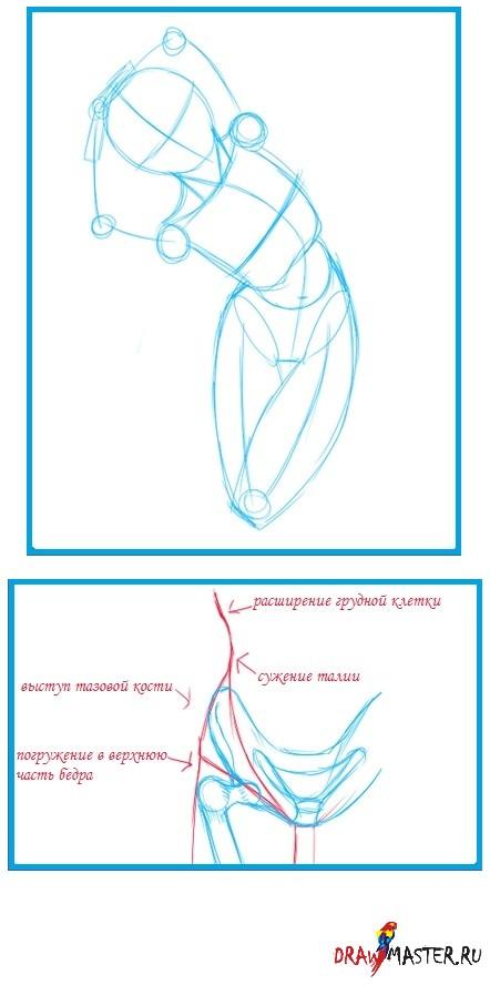Как сделать эскиз из вшопе